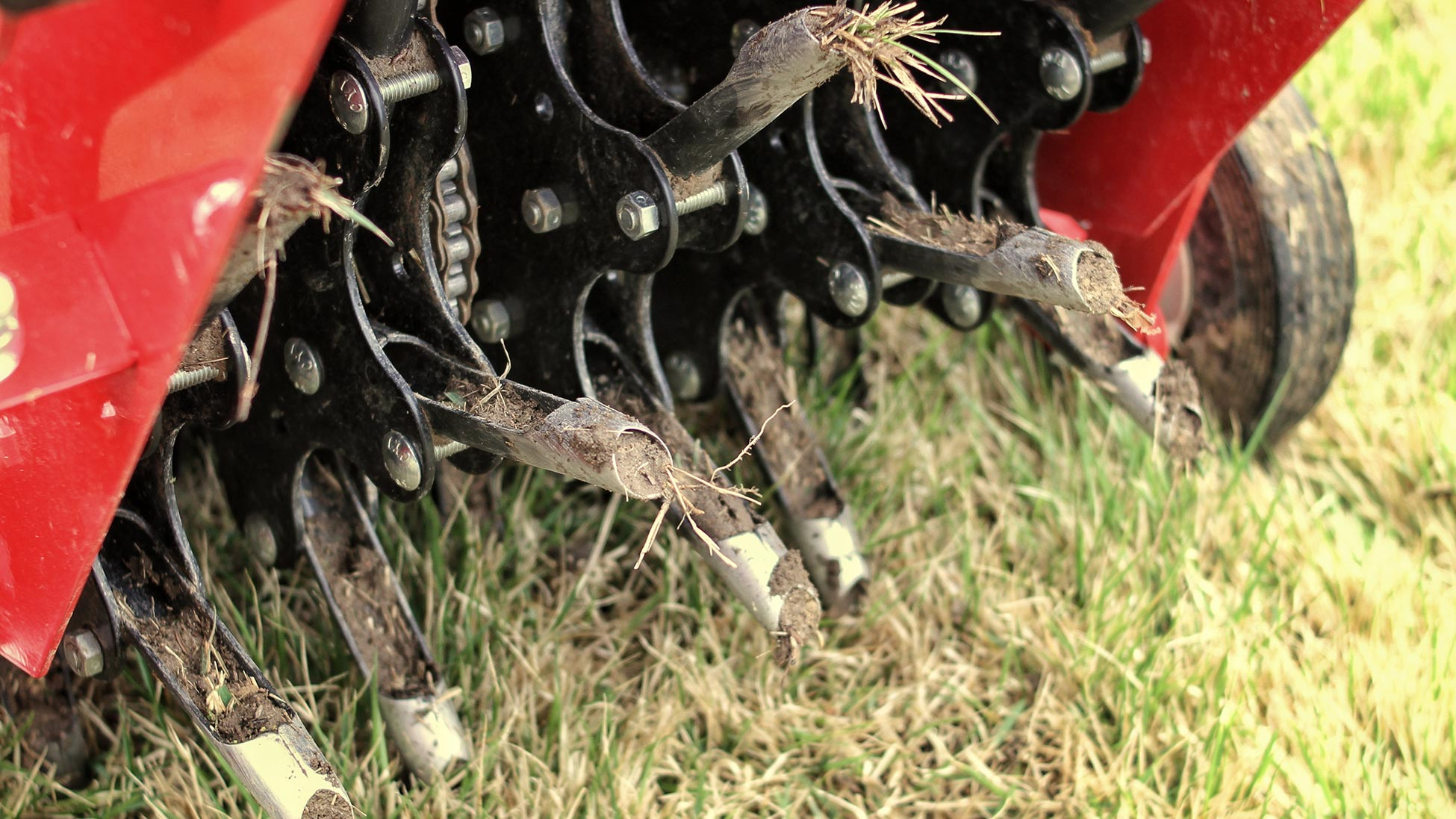 Core aeration is an important ingredient towards restoring your lawn.
