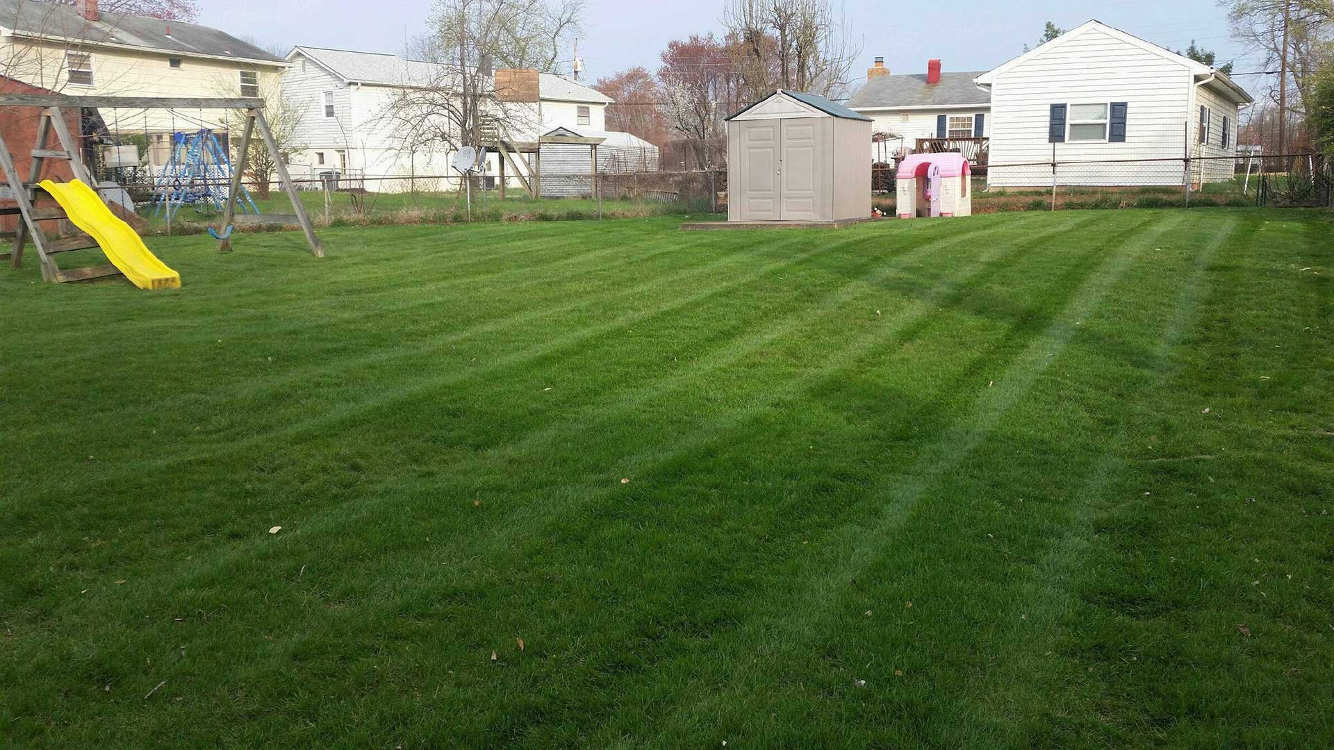 A backyard with mowing stripes in Bristow, VA.