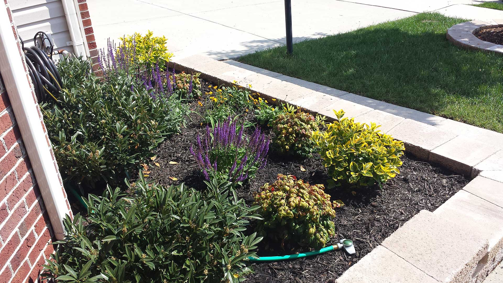 Our landscape maintenance services for Haymarket include ground cover installation, weeding, trimming and pruning, and more.