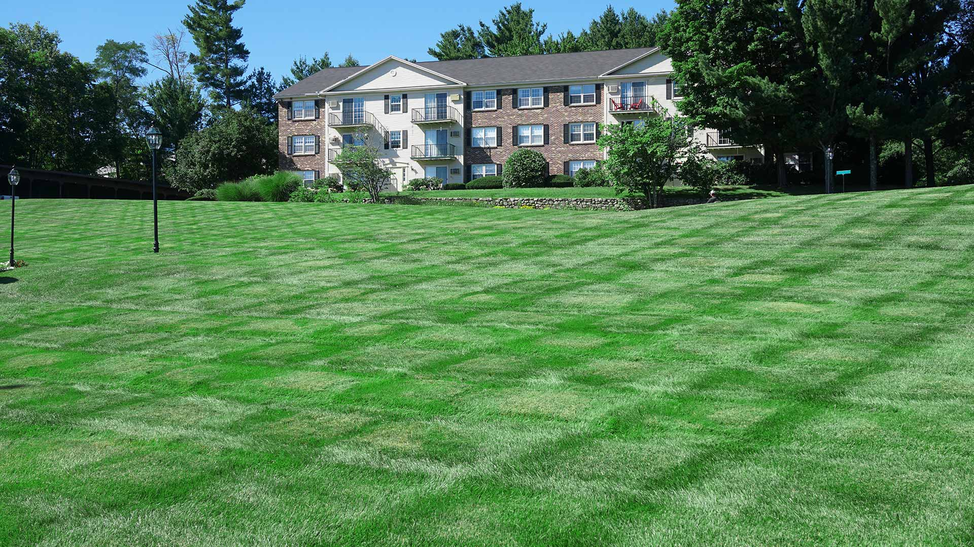 Fresh mowing lines near residential apartments in Bristow, VA.