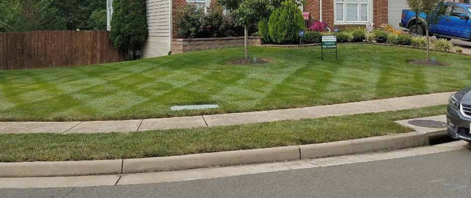 Home lawn in Bristow, VA with weed control treatment.