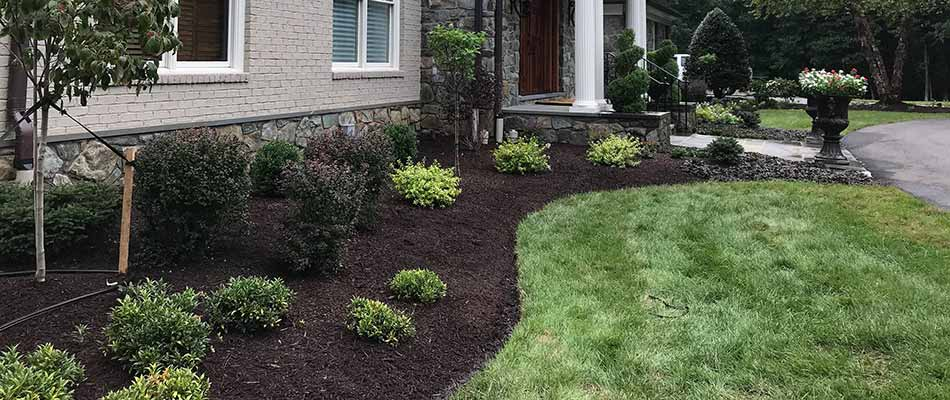 Landscape bed with dark mulch and weed control in Haymarket, VA.