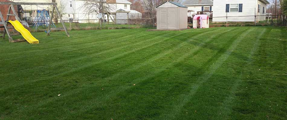 A number of our mowing customers have larger backyards in Bristow.
