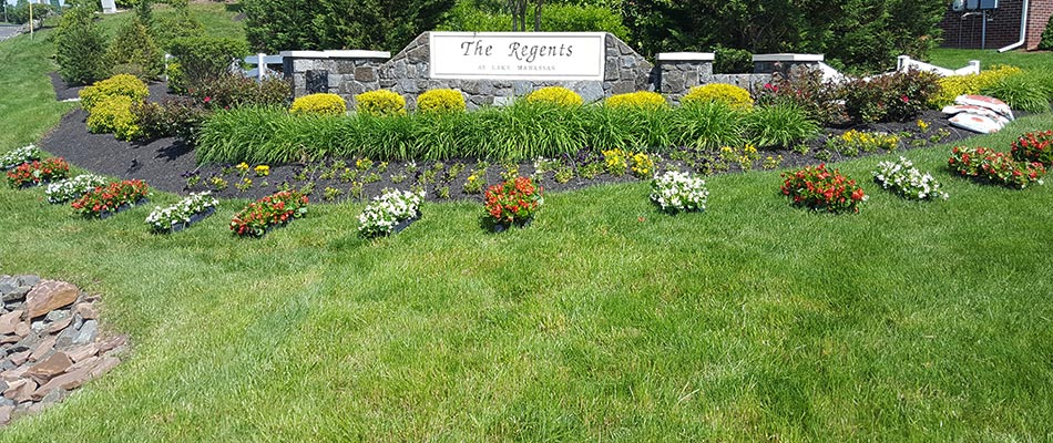 This commercial property in Lake Manassas has flourished with our lawn care services.