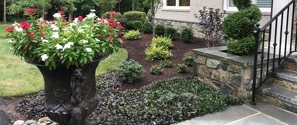 The landscape beds at the entry of this Bristow home are well maintained, with fresh mulch.