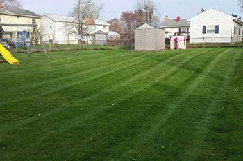 Haymarket, VA residential property with effective weed control and fertilization treatment.