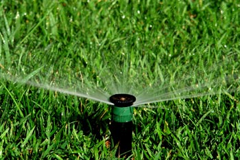 Sprinkler head distributing water on a healthy lawn in Bristow, VA.