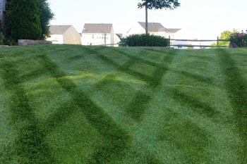 Lawn mowing pattern after a recent mow at a home in Bristow, VA.